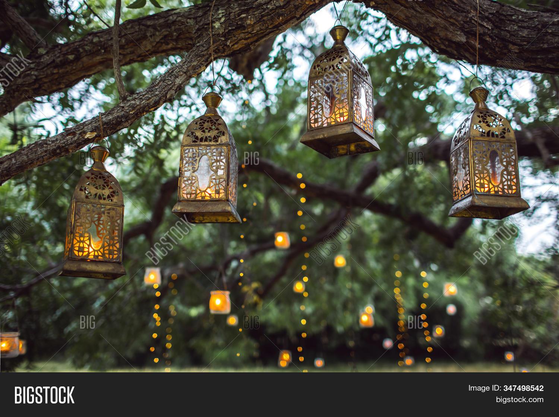 Evening Wedding Image Photo Free Trial Bigstock