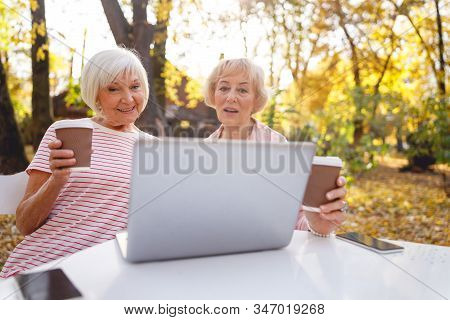 Interested Old Friends Looking Through Their Social Media