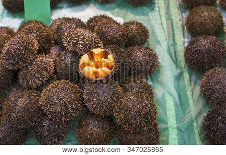 Fresh Raw Edible Part Of Sea Urchin Or Uni Selling In Kurumon Market , Osaka , Japan
