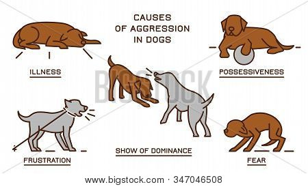 Causes Of Aggression In Dogs. Dog Behavior Problem Icons Set. Domestic Animal Or Pet Language. Yappi