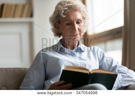 Peaceful Older Woman Reading Interesting Bestseller Paper Book.