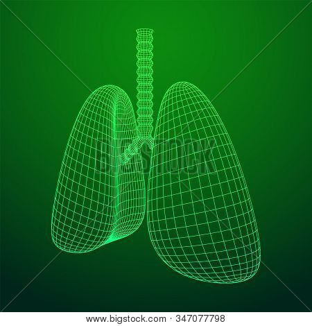Lungs With Trachea Bronchi Internal Organ Human. Pulmonology Medicine Science Technology Concept. Wi