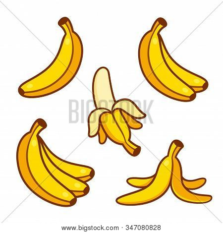 Set Of Cartoon Banana Drawings: Single And Bunch, Peeled Banana And Empty Peel On The Ground. Vector