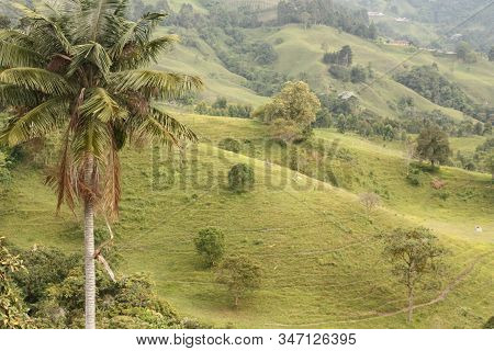 Andean Mountains That Surround The Small Andean And Coffee Town Of Salento, In The Quindio Coffee Re