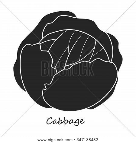 Cabbage Vector Icon.black, Simple Vector Icon Isolated On White Background Cabbage .