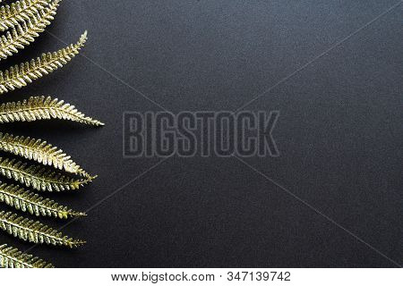 Floral Background With Golden Fern Leaves And Copy Space For Your Text