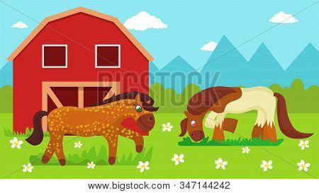 Two Cute Cartoon Horses Walking Outdoor And Eating Grass On Farm Pasture Meadow With Flowers Near St