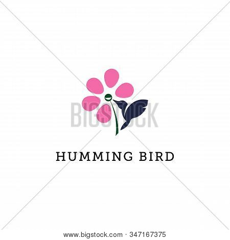 Humming Bird Logo Illustration, Flower And Bird Logo Template Can Use For Your Trademark, Branding I
