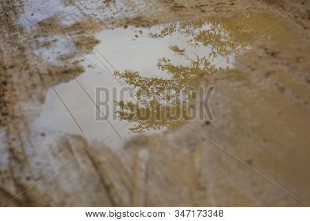 Puddle In The Mud 3