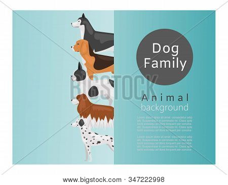 Different Kinds Of Dog Breeds Vector Illustration Poster. Big Size Dogs Husky, Spaniel And Dog For H