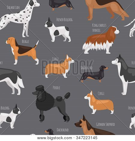 Dog Breeds Vector Seamless Pattern Illustration. Big Size Dogs For Home Pets, Bulldog, Spaniel, Pood