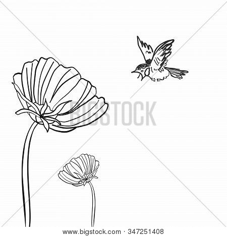 An Active Sparrow Flies To Large Flowers. Sketch On A White Background.