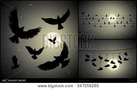 Set Of Vector Illustration With Silhouettes Of Flying Birds And Shoes On Moonlit Night. Flock Of Pig
