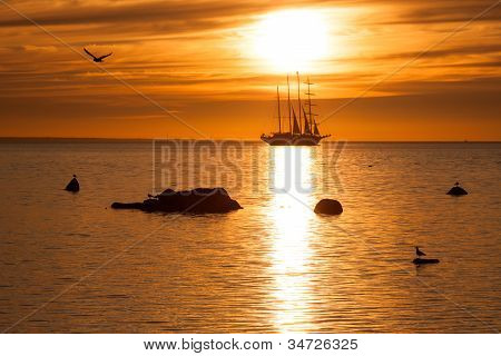 Old tall sail ship silhouette in sunset in sea poster