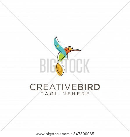 Bird Logo Abstract Graphic Out Line And Modern Vector . Flying Bird Logo Abstract Colorful Design Ve