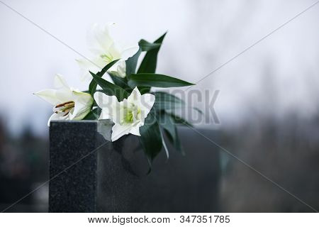 White Lilies On Black Granite Tombstone Outdoors, Space For Text. Funeral Ceremony