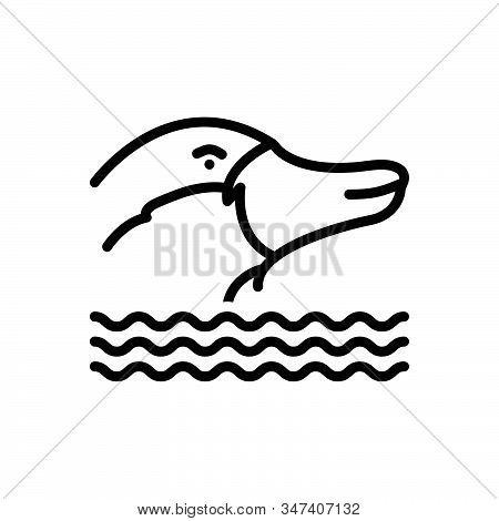 Black Line Icon For Platypus Nocturnal Burrowing Mammal Animal