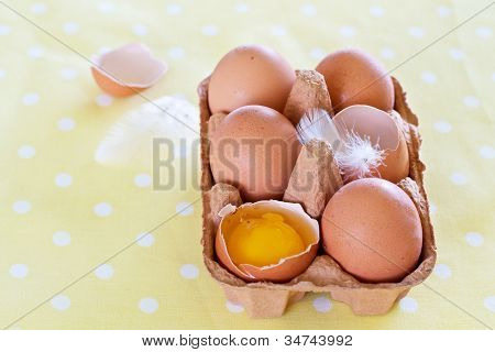 Eggs And Feathers On Spotted Cloth