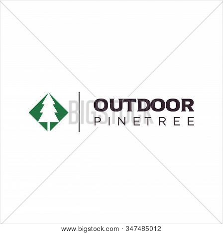 Pine Tree Outdoor Logo , Natural Pine Tree Badge Abstract Stem Drawing Vector Illustration. Creative