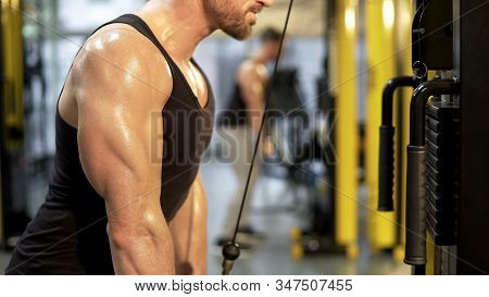 Sportsman Doing Pull-downs In Gym, Healthy Lifestyle, Strengthening Muscles