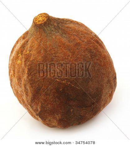 Terminalia bellericais or medicinal Bahera fruits of India poster