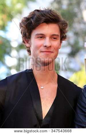 LOS ANGELES - JAN 23:  Shawn Mendes at the Sir Lucian Grange Star Ceremony on the Hollywood Walk of Fame on JANUARY 23, 2019 in Los Angeles, CA