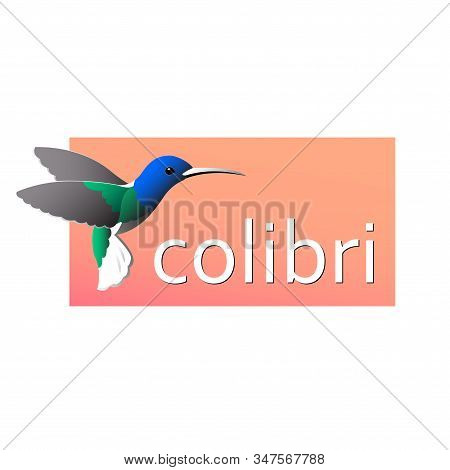 Colorful Drawing Of Birdies Colibri. Waving Its Wings On A Red Background. Vector Isolated Illustrat
