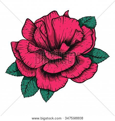 Vector Etching Handdrawn Tatoo Style Rose Illustration. Great For Fabric, Print And Invitation.