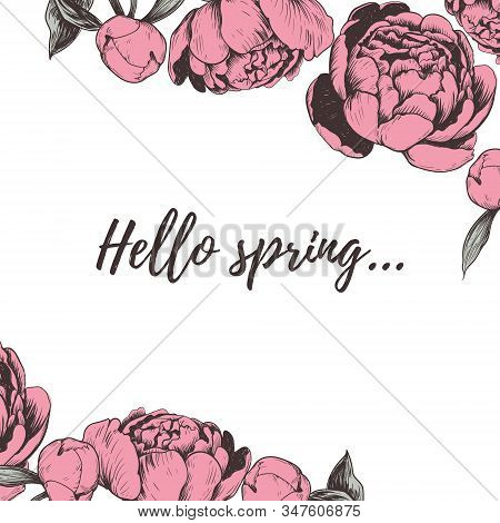 Hello Spring Lettering Peony Vector Illustration. Peonies Hand Drawing. Peony Sketch Greeting Card