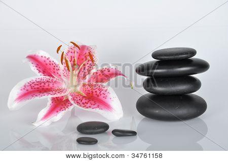 Spa Rocks