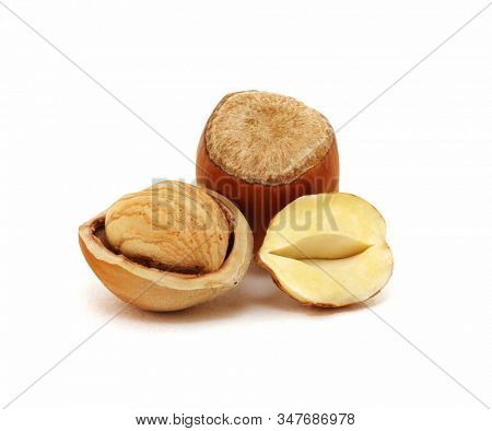 Closeup of hazelnuts isolated on the white background.