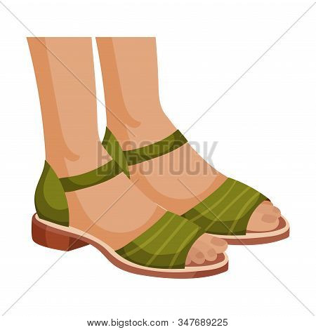 Open Woman Sandals With Flat Sole For Summer Vector Illustration