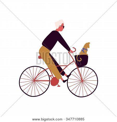Cartoon Stylish Male Riding On Bike With Cat Sitting In Basket Vector Flat Illustration. Trendy Man
