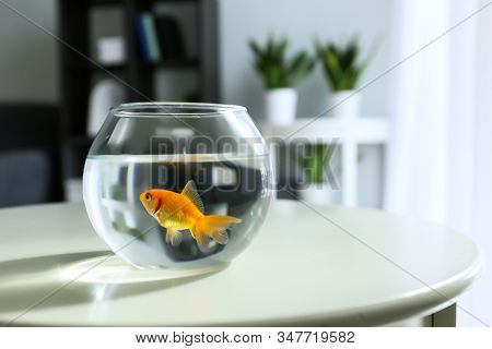 Goldfish In An Aquarium On The Table