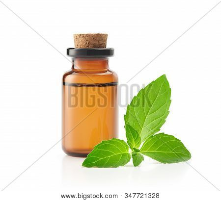 Peppermint Essential Oil Isolated On White Background - Clipping Path Included