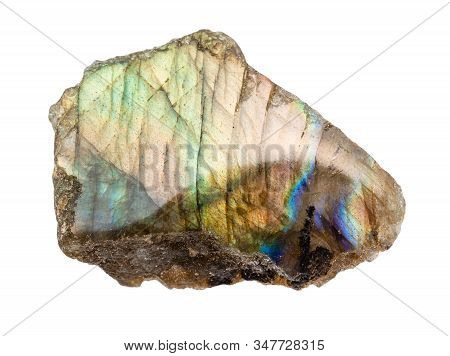 Closeup Of Sample Of Natural Mineral From Geological Collection - Polished Labradorite Rock Isolated