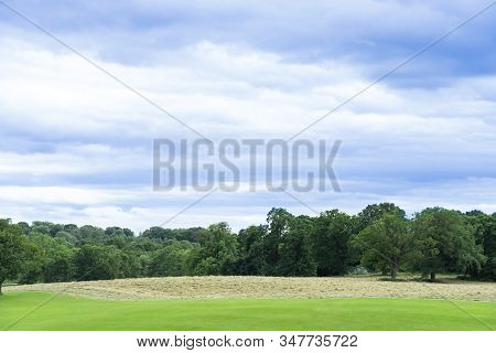 Fresh Air And Beautiful Natural Landscape Of Meadow With In Spring Or  Summer. Beautiful Lanscape Of