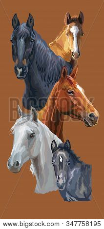Vertical Postcard With Horses. Colorful Vector Realistic Portraits Of Horses. Group Of Horses Isolat