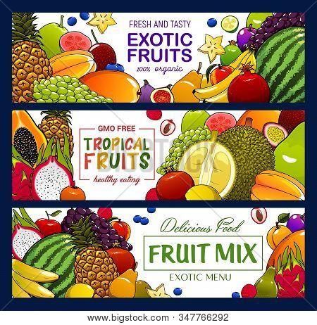 Fruits And Berries Vector Banners. Tropical Apple, Banana And Exotic Papaya, Grapes, Pineapple And J