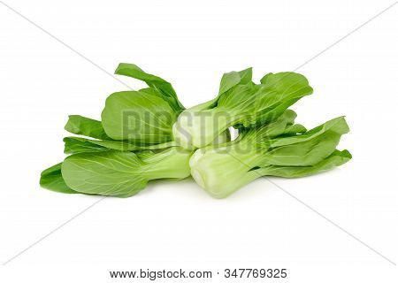 Fresh Baby Bok Choy Or Chinese Cabbage On White Background