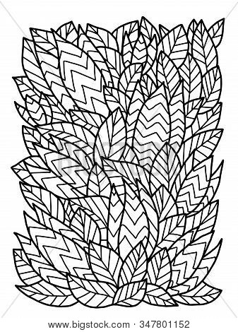 Wildlife Plant Of Venus Flytrap Unusual Coloring Page. Exotic Tropical Bush With Flowers Black Outli