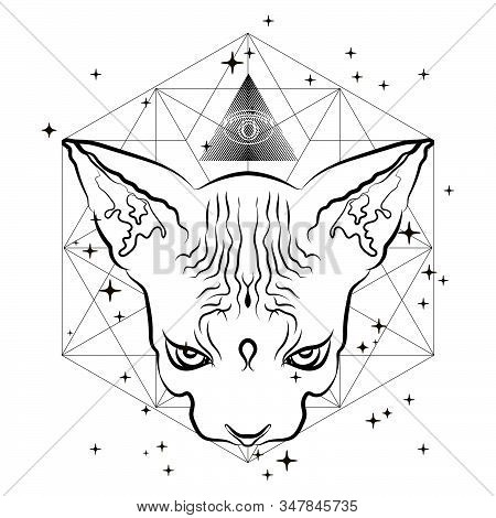 Mystical Illustration With Egyptian Cat. Can Be Used For Topics In Alchemy, Esotericism, Mysticism,