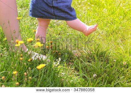 Mom Learning Baby Daughter To Walk, First Steps In Park At Summer Warm Day, Barefooted Legs In Grass