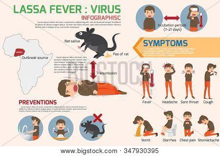 Lassa Fever Virus Infographics Elements. Lassa Fever Symptoms And Prevention. Health And Medical Con