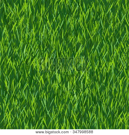 Green Grass Texture Or Background. Seamless Pattern. Spring Lawn Texture. New Grass Background.