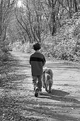 Boy Walking the Dog on a Path poster