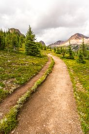 View Of Cirque Peak From The Hiking Trail To Helen Lake In Banff National Park, Alberta, Canada