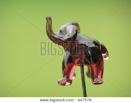 pin head – elephant against green blurred background poster