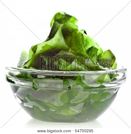 seaweed kelp ( laminaria ) in glass bowl close up isolated on white background