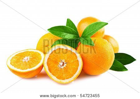 oranges fruits isolated on white